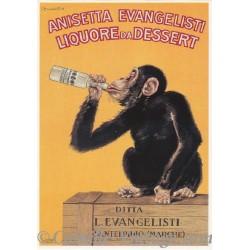 Carte Postale Anisetta Evangelisti