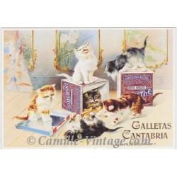 Postcard Galletas Cantabria San Sebastian