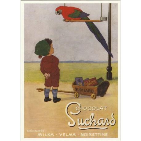Postcard Chocolat Suchard Perroquet
